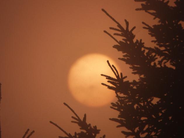 北海道ソロキャンプの旅その12 キャンプ場は霧の朝