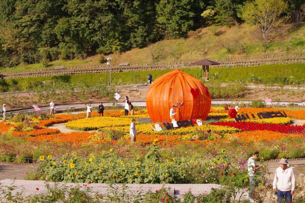 花フェスタ記念公園 ハロウィンガーデン