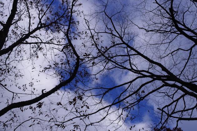 日曜日の朝の空