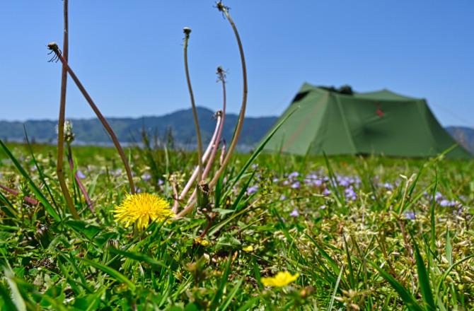 一年で一番気持ちよい春の湖畔でソロキャンプ 後編